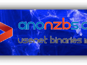 AnonNZBs Review
