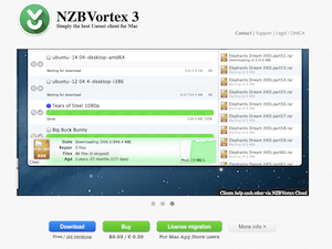 NZBVortex Review